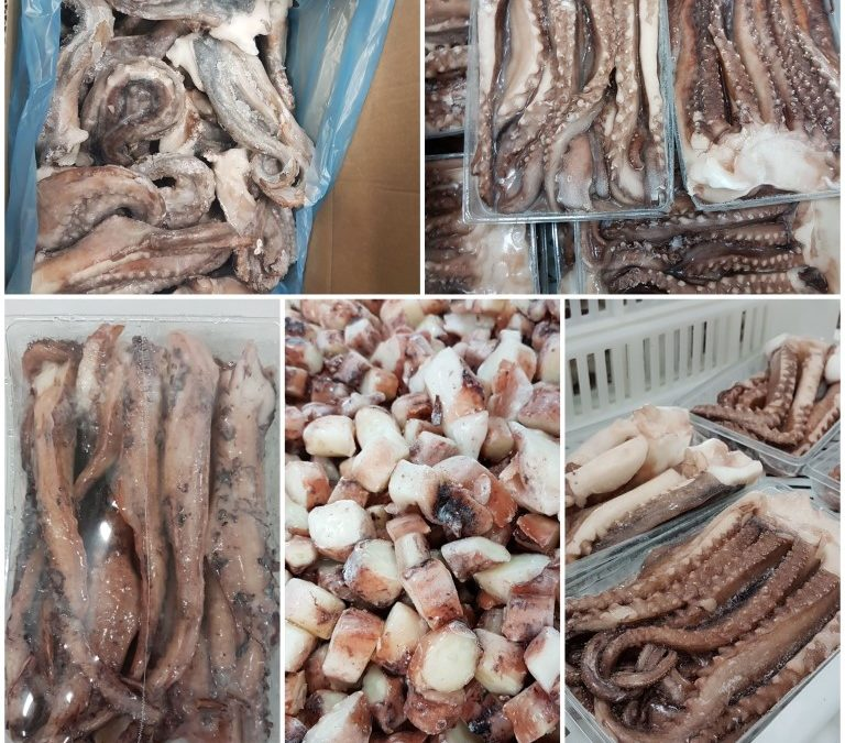 Fishery Progress | Peruvian jumbo flying squid FIP is now available